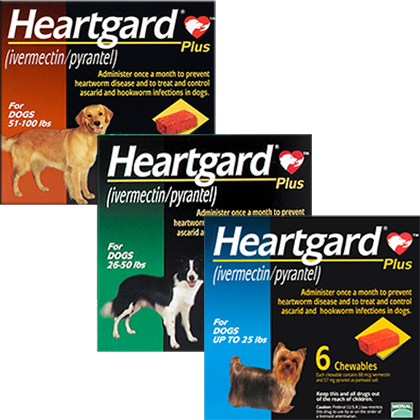Heartgard Plus large