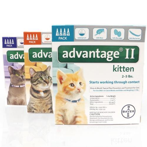 advantage2